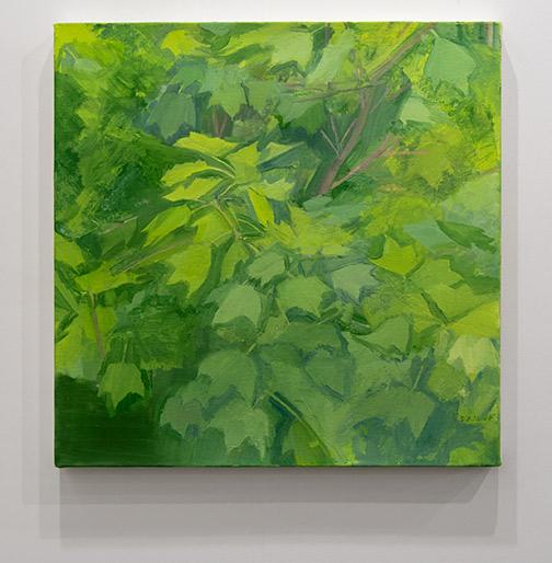 Sylvia Plimack Mangold / Sylvia Plimack Mangold Summer Maple Detail  2014 61 x 61 cm oil on linen