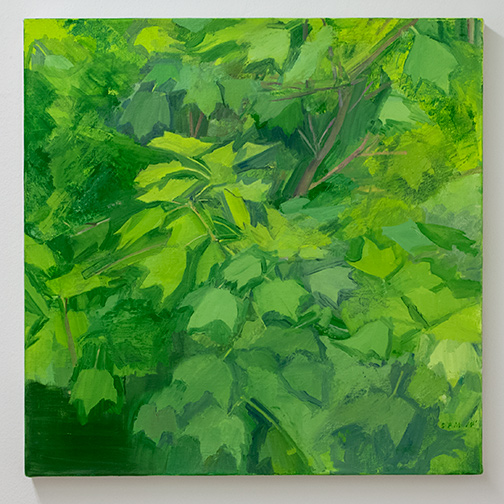 Sylvia Plimack-Mangold / Sylvia Plimack Mangold Summer Maple Detail  2014  61 x 61 cm oil on linen