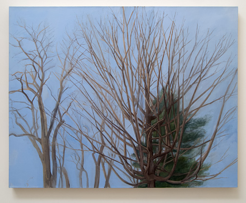 Sylvia Plimack-Mangold / Sylvia Plimack Mangold Winter Maple and Pine  2007  114.3 x 152.4 cm / 45 x 60 '' Oil on linen