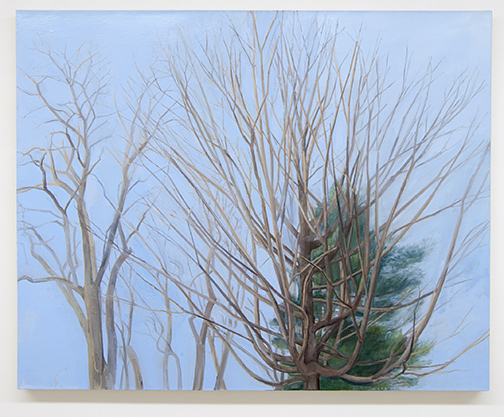 Sylvia Plimack-Mangold / Sylvia Plimack Mangold The Maple with Locust and Pine  2003  101.6 x 127 cm Öl auf Leinen