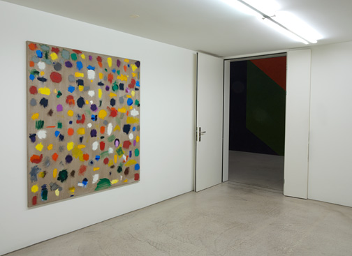 James Bishop,  				Antonio Calderara,  				Joseph Egan,  				Richard Francisco,  				Robert Mangold,  				Sylvia Plimack Mangold,  				Jerry Zeniuk,  				Sol LeWitt, The Skin of Painting (Die Haut der Malerei)