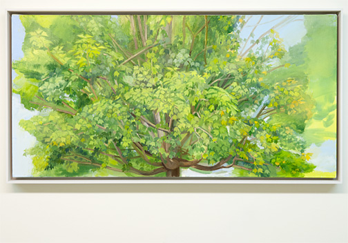 Sylvia Plimack Mangold / Sylvia Plimack Mangold Summer Maple 2009  2009  62.2 x 122 cm Oil on linen