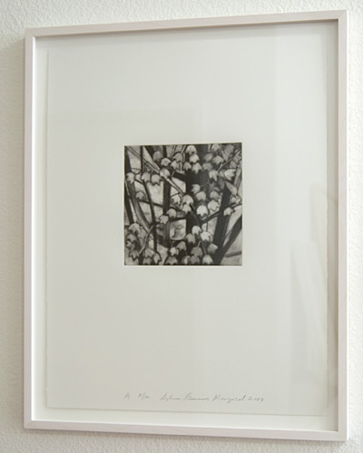 Sylvia Plimack Mangold / Sylvia Plimack-Mangold Maple Tree Detail A  2009 46 x 35.5 cm mezzotint and drypoint on paper Edition 8/30