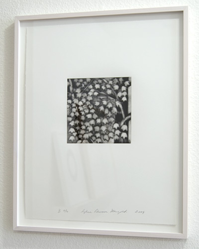 Sylvia Plimack Mangold / Sylvia Plimack-Mangold Maple Tree Detail B  2009 46 x 35.5 cm mezzotint and drypoint on paper Edition 8/30