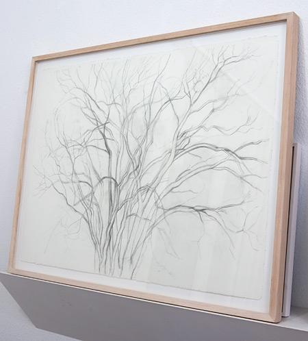 Sylvia Plimack Mangold / Sylvia Plimack-Mangold Untitled (November 1990)  1990 57.8 x 76.8 cm pencil on paper
