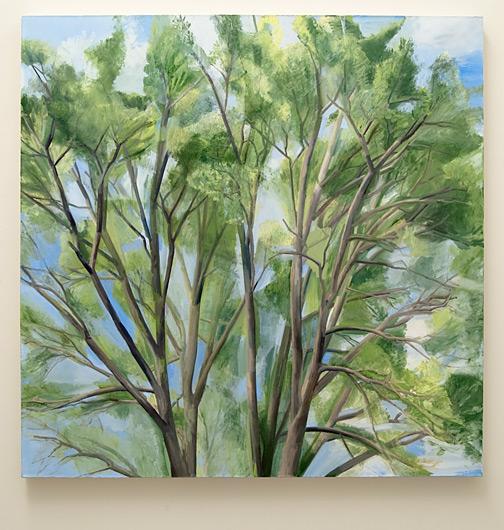 Sylvia Plimack Mangold / Sylvia Plimack Mangold Summer Pin Oak  1998 152.5 x 152.5 cm oil on canvas