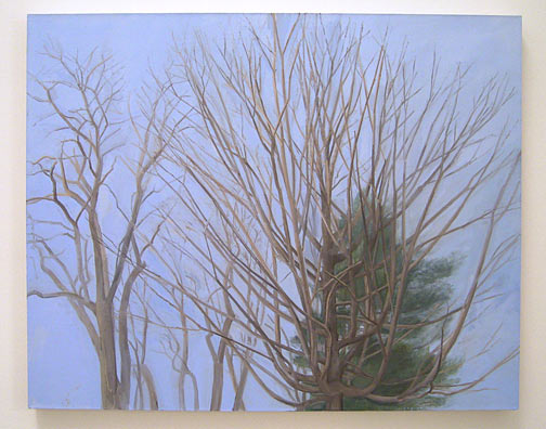 Sylvia Plimack-Mangold / The Maple with Locust and Pine  2003 101.6 x 127 cm / 40 x 50 '' oil on linen