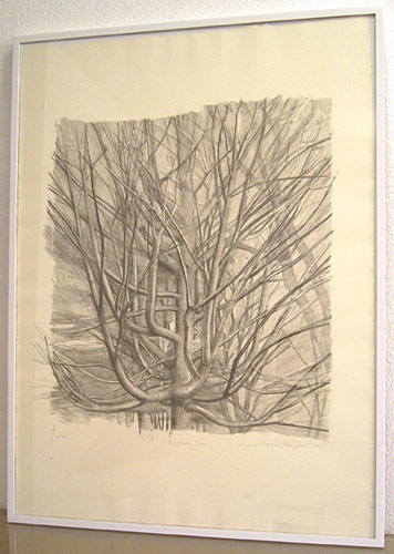"Sylvia Plimack-Mangold / The Maple Tree  1998 lithograph 81.3 x 59 cm / 32 x 23 1/4 "" Edition 9/40"