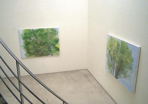 Sylvia Plimack Mangold / Sylvia Plimack Mangold