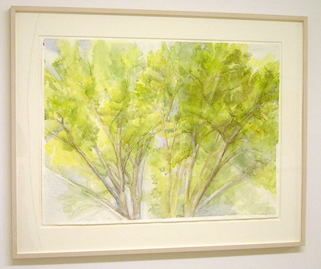 "Sylvia Plimack-Mangold / The Pin Oak September 2004  2004 56 x 76.2 cm / 22 x 30 "" watercolor and pencil on paper"
