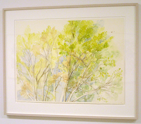 "Sylvia Plimack-Mangold / The Pin Oak 10/18/03   2003 56.5 x 75.5 cm / 22.25 x 29.75 "" watercolor and pencil on paper"