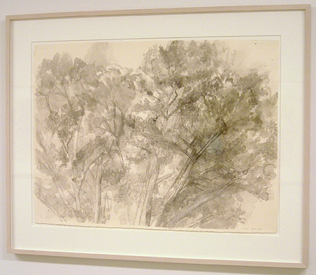 "Sylvia Plimack-Mangold / The Pin Oak 8/8/05   2005 55.9 x 75.6 cm / 22 x 29.75 "" watercolor and pencil on paper"