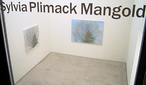 Sylvia Plimack-Mangold / Sylvia Plimack Mangold